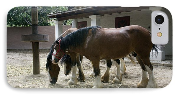 Draft Horses IPhone Case by Lynn Palmer