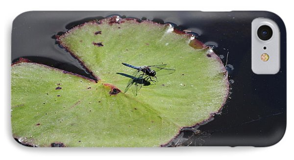 Dragon Fly On A Lily Pad IPhone Case by Charlie Day