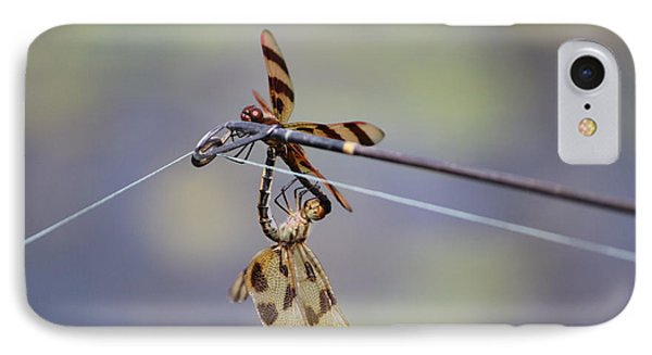 Dragonflies IPhone Case by Jewels Blake Hamrick