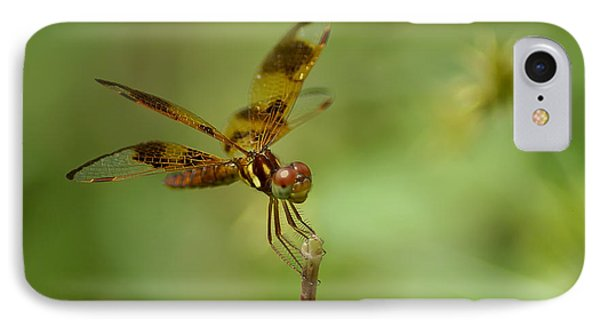 IPhone Case featuring the photograph Dragonfly 2 by Olga Hamilton
