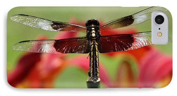 Dragonfly Beauty IPhone Case