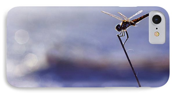 Dragonfly Blue IPhone Case by Laura Fasulo