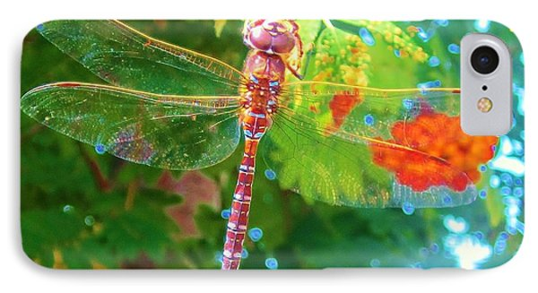 Dragonfly IPhone Case by Cathy Long