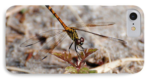 Dragonfly IPhone Case by Dan Williams