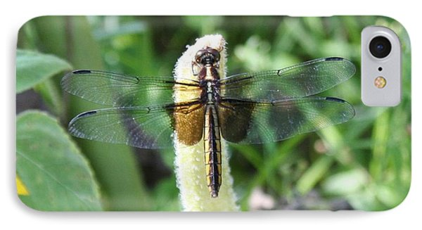 IPhone Case featuring the photograph Dragonfly by Karen Silvestri