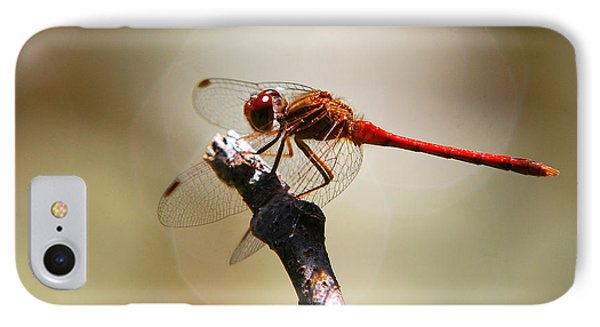 Dragonfly Light Phone Case by Christina Rollo