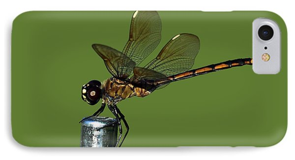 IPhone Case featuring the photograph Dragonfly by Meg Rousher