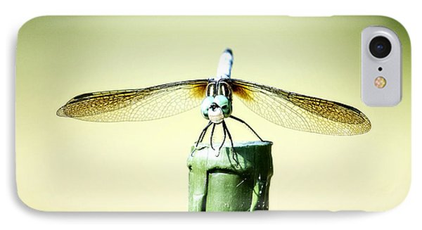 Dragonfly IPhone Case by Michael White
