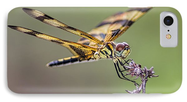 IPhone Case featuring the photograph The Halloween Pennant Dragonfly by Olga Hamilton
