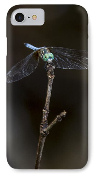 IPhone Case featuring the photograph Dragonfly On Branch by Paula Porterfield-Izzo