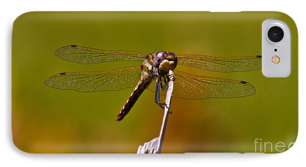 Dragonfly Portrait Phone Case by Mitch Shindelbower