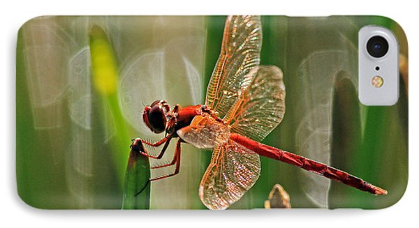 Dragonfly Profile IPhone Case