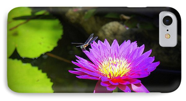 IPhone Case featuring the photograph Dragonfly Resting by Laurie Perry