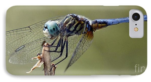 Dragonfly Smile IPhone Case by Lilliana Mendez
