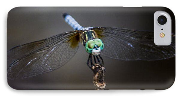 IPhone Case featuring the photograph Dragonfly Wings by Paula Porterfield-Izzo