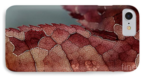 IPhone Case featuring the photograph Dragon's Spine by Kenny Glotfelty