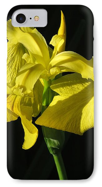 IPhone Case featuring the photograph Drama Queen by Phyllis Beiser