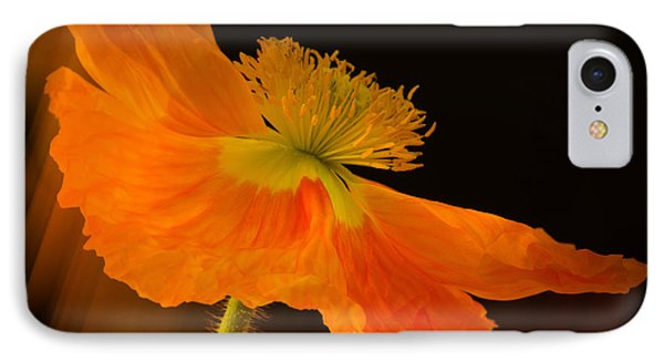 Dramatic Orange Poppy IPhone Case by Don Schwartz