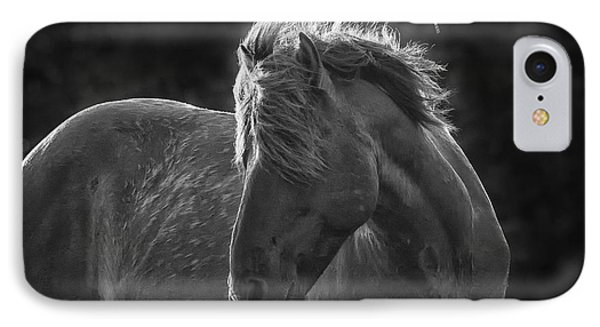 Dramatic Wild Mustang IPhone Case by Bob Decker