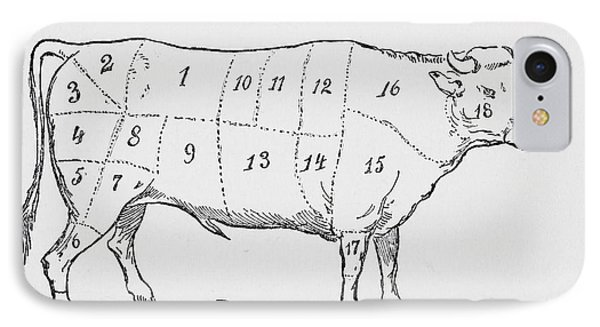 Drawing Of A Bullock Marked To Show Eighteen Different Cuts Of Meat IPhone Case