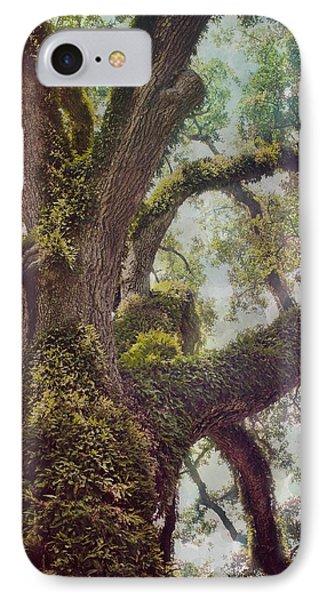 Dreamer's Oak IPhone Case by Maria Robinson