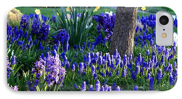 Dreaming Of Spring Phone Case by Carol Groenen