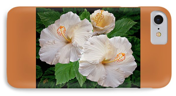 Dreamy Blooms - White Hibiscus IPhone Case by Ben and Raisa Gertsberg