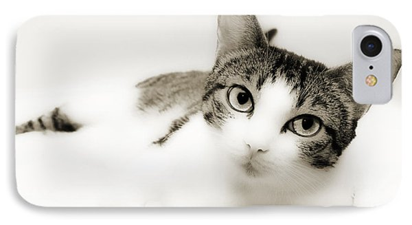 Dreamy Cat 2 Phone Case by Andee Design