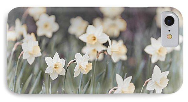 Dreamy Daffodils IPhone Case by Elena Elisseeva