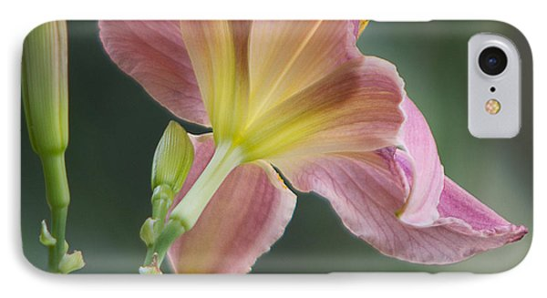 IPhone Case featuring the photograph Dreamy Daylily by Patti Deters