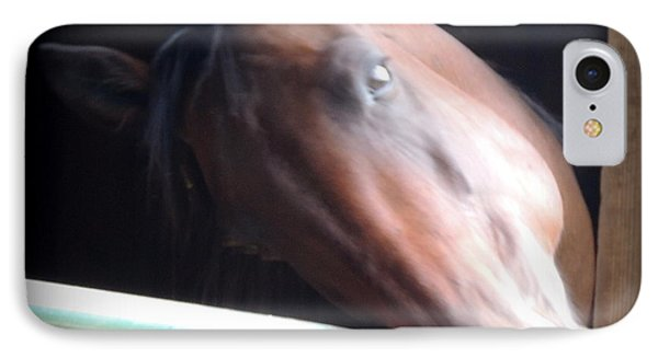 Dreamy Harry Trotter At Blue Horse Rescue IPhone Case