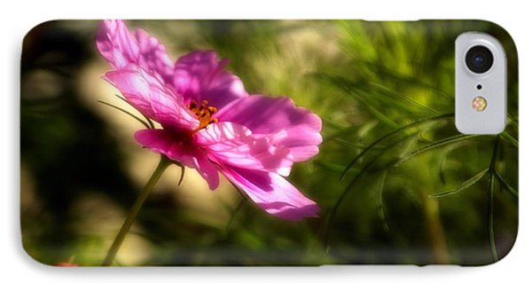 IPhone Case featuring the photograph Dreamy Pink Comos by Marjorie Imbeau