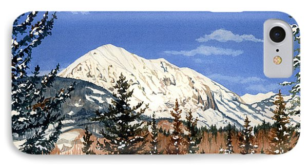 Dressed For Winter IPhone Case by Barbara Jewell