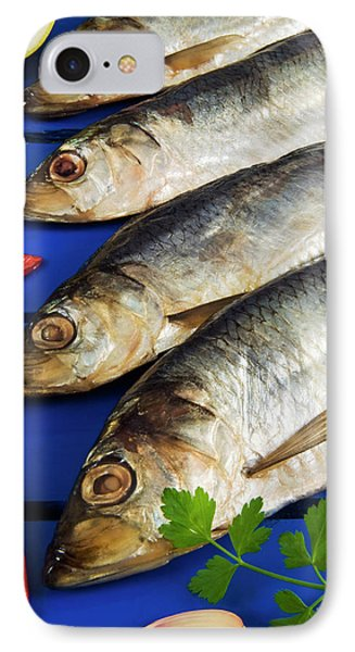 Dried And Smoked Atlantic Herring IPhone Case by Nico Tondini