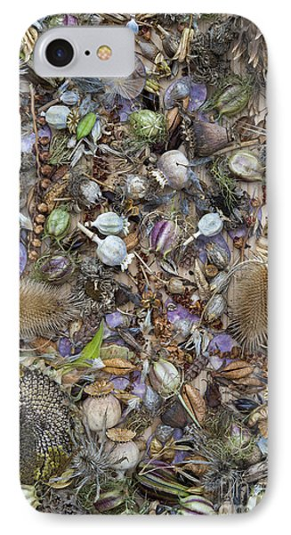 Dried Flower Seeds IPhone Case