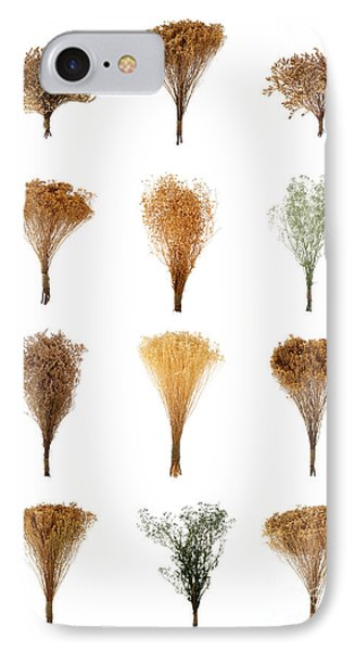 Dried Flowers Collection Phone Case by Olivier Le Queinec
