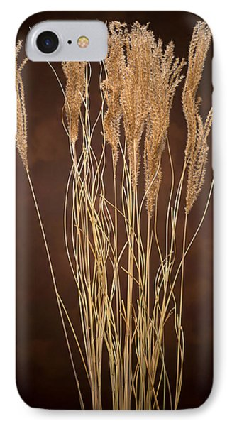 Dried Winter Grasses Phone Case by Steve Gadomski