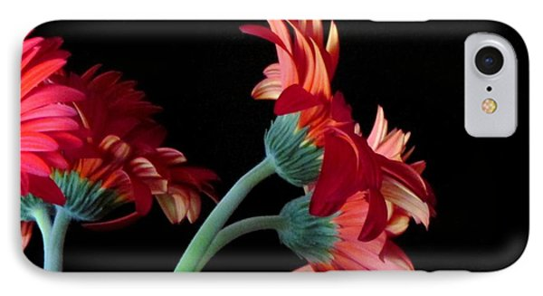IPhone Case featuring the photograph Drift Apart by Brenda Pressnall