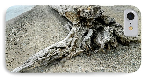 Driftwood At Lake Erie IPhone Case by Kathy Barney