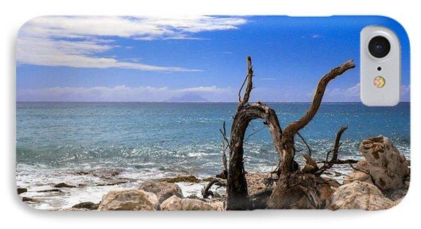 Driftwood Island Phone Case by Karen Wiles