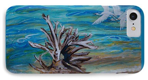 Driftwood On Lake Huron IPhone Case