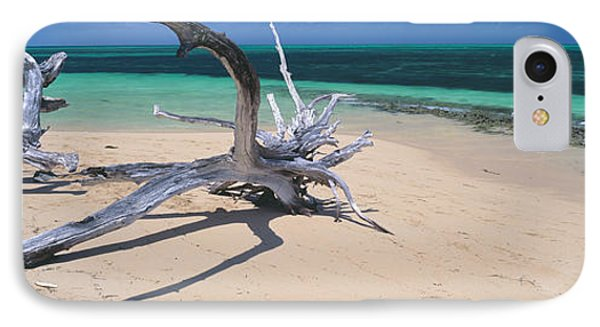 Driftwood On The Beach, Green Island IPhone Case