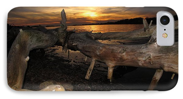Driftwood Sunset Phone Case by Donnie Freeman