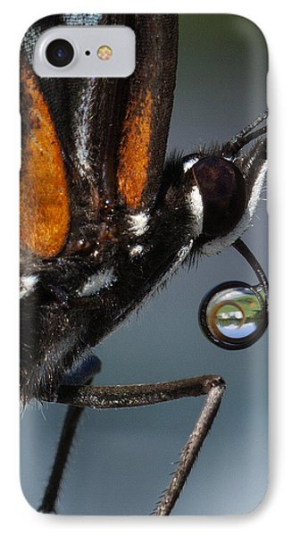 IPhone Case featuring the photograph Drinking Dew Drops 7 by David Lester