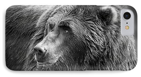 Drinking Grizzly Bear Black And White IPhone Case by Steve McKinzie