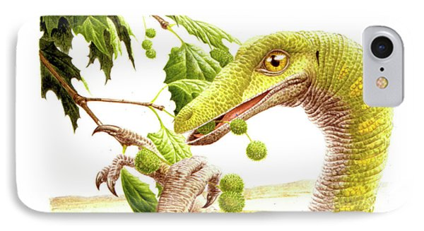 Dromiceiomimus Dinosaur IPhone Case by Deagostini/uig