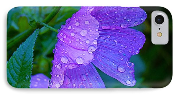 Drops Of Delight IPhone Case by Rita Mueller