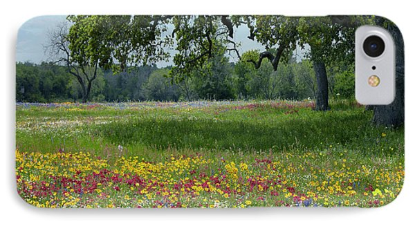 Drummond's Phlox, Coreopsis, Texas IPhone Case