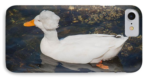 White Crested Duck Phone Case by Ernest Puglisi