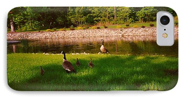 Duck Family Getting Back From Pond IPhone Case by Amazing Photographs AKA Christian Wilson